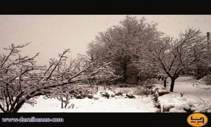 حقل وثلج