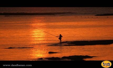صياد في بحر صور - صيف 2010 / تصوير غادة ناصر الدين