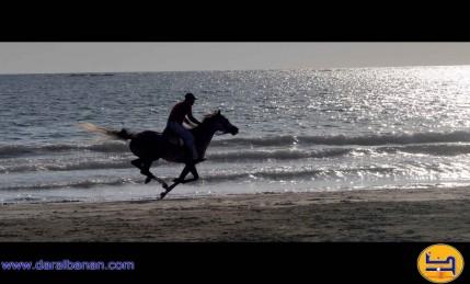 فارس على رمال شاطئ بحر صور